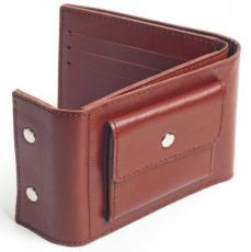 Кошелек EZCASE Travel C3.3 Brown